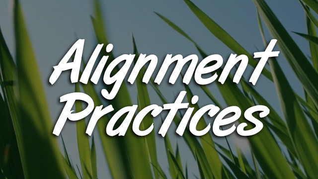 Alignment Practices
